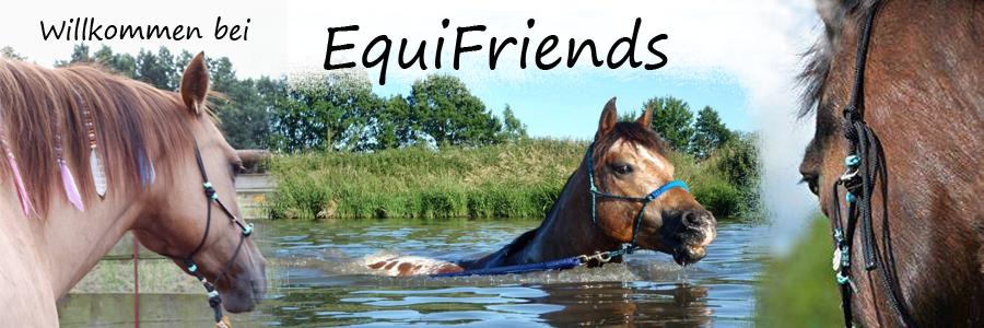 EquiFriends